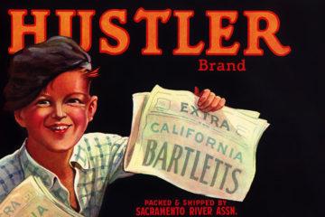 hustler_pears_crate_label